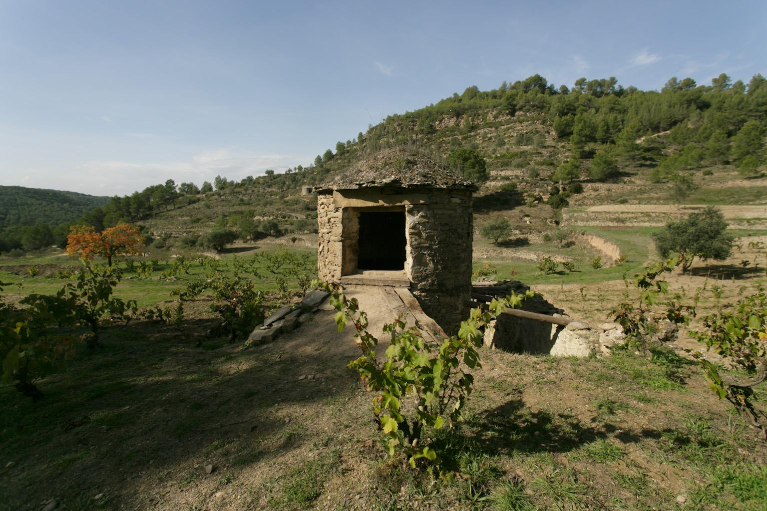 Tina de pedra seca a la Vinya Arboset d'Abadal   Abadal